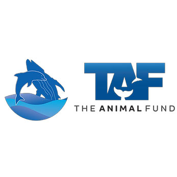 The Animal Fund