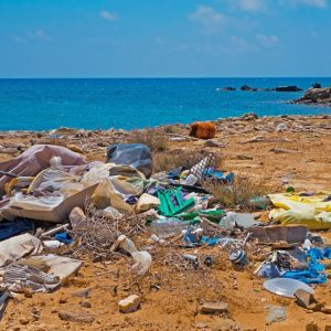 Challenges and solutions for waste and plastics management