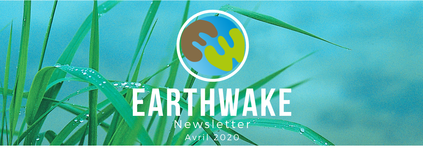 Newsletter d'Earthwake – 04/2020